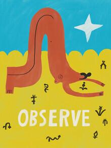 Aley Hanson, Observe Nature (Australien, Australien und Ozeanien)