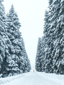 Lukas Saalfrank, Person steht in verschneitem Wald (Deutschland, Europa)