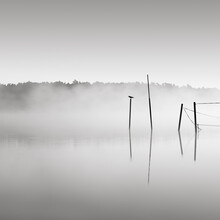 Thomas Wegner, Hohennauener See im Nebel (Deutschland, Europa)