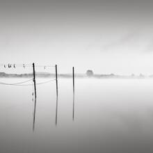 Thomas Wegner, Hohennauener See im Nebel 2 (Deutschland, Europa)