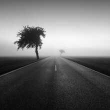 Thomas Wegner, Road to nowhere 1 (Germany, Europe)