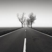 Thomas Wegner, Road to nowhere 4 (Deutschland, Europa)