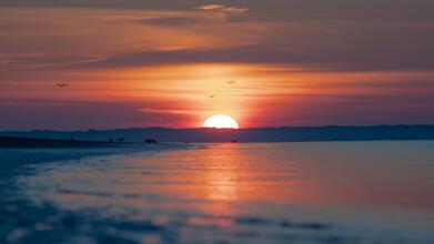 Philipp Behncke, Das letzte Sonnenlicht (Deutschland, Europa)