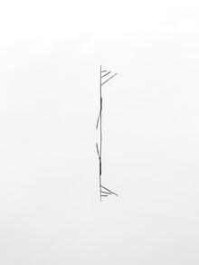 Holger Nimtz, minimalist beauty (Deutschland, Europa)