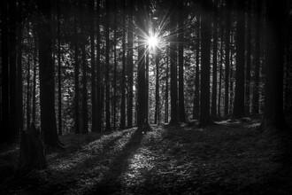 Thomas Staubli, Light and shadow (Switzerland, Europe)