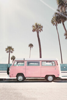 Kathrin Pienaar, Pink Van (United States, North America)