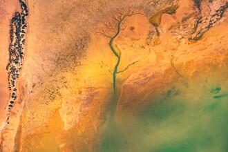 Leander Nardin, abstract green channel (Australia, Oceania)