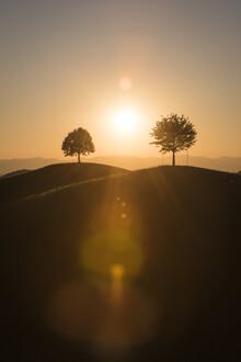 Thomas Staubli, Der Tag erwacht (Schweiz, Europa)