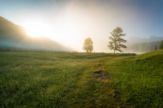 Martin Wasilewski, Summer Fog (Germany, Europe)