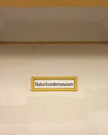 Claudio Galamini, U-Bahnhof Naturkundemuseum (Deutschland, Europa)