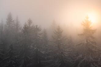 Kristof Göttling, Ein nebliger Morgen (Deutschland, Europa)