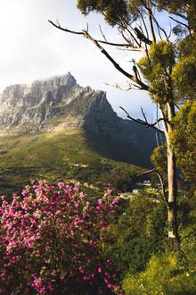 Kristof Göttling, Table Mountain (South Africa, Africa)