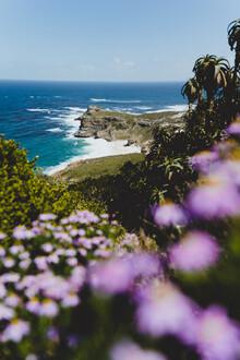 Kristof Göttling, Cape of Good Hope (South Africa, Africa)