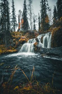 Kristof Göttling, Fairytale forest (Finland, Europe)