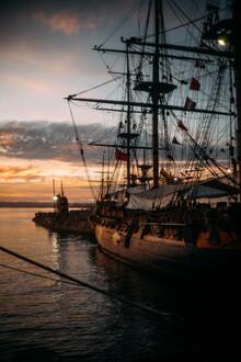 Sebastian Trägner, Pirates (Vereinigte Staaten, Nordamerika)