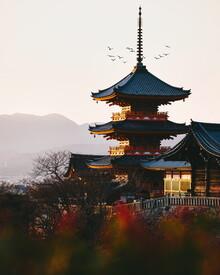 André Alexander, Kiyomizu Temple (Japan, Asien)
