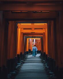 André Alexander, Torri walks (Japan, Asia)