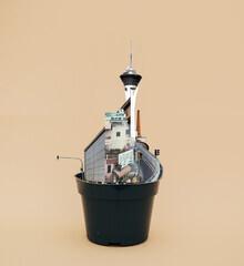 Marko Köppe, flowerpot life 1 (Deutschland, Europa)