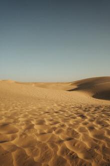 David Wurth, Thar Desert | Spuren im Sand (Indien, Asien)