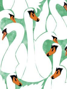 Uma Gokhale, White Calm Was Born Into A Swan (Indien, Asien)
