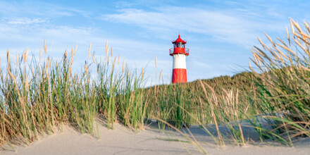 Jan Becke, List Ost panorama on Sylt (Germany, Europe)