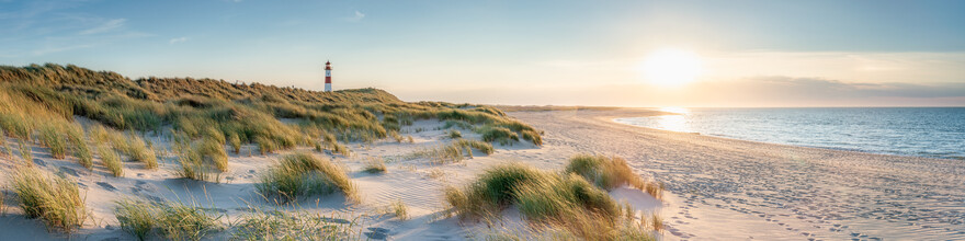 Jan Becke, Dune landscape on Sylt (Germany, Europe)