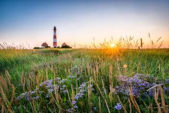 Jan Becke, Lighthouse Westerheversand at sunset (Germany, Europe)