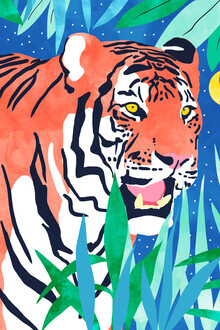 Uma Gokhale, Tiger Forest (Indien, Asien)