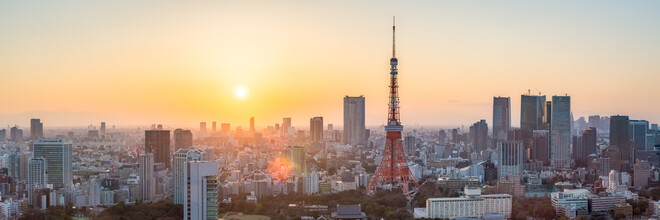 Jan Becke, Tokyo Skyline at sunset with Tokyo Tower (Japan, Asia)