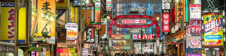 Jan Becke, Kabukicho in Tokyo (Japan, Asien)