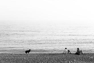 Aria Wojciechowski, Schwarzer Hund am blauen Meer (France, Europe)