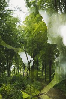 Nadja Jacke, Sommer im Teutoburger Wald (Deutschland, Europa)