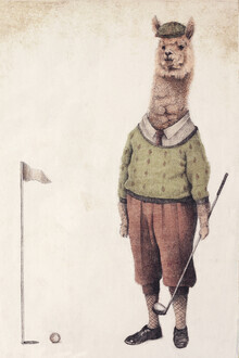 Mike Koubou, Alpaca Golf club (Griechenland, Europa)