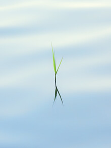 Beauty of Minimalism - Fineart photography by Holger Nimtz