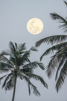Victoria Frost, Full Moon (India, Asia)