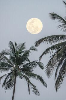 Victoria Frost, Full Moon (Indien, Asien)