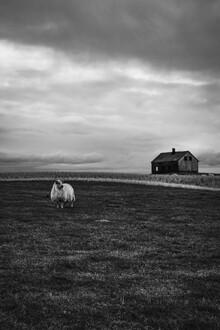 Max Saeling, Minimalismus (Island, Europa)