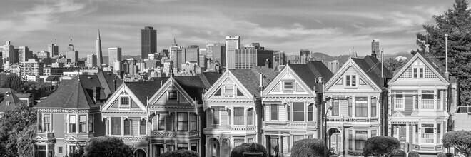 Melanie Viola, Painted Ladies & San Francisco Skyline Monochrom (Vereinigte Staaten, Nordamerika)