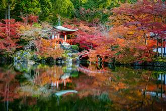 Jan Becke, Daigo-ji Tempel in Kyoto (Japan, Asien)
