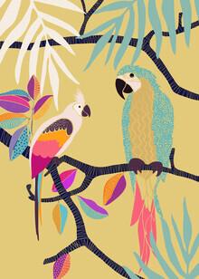 The Artcircle, Parrots von Cats & Dotz (Rumänien, Europa)