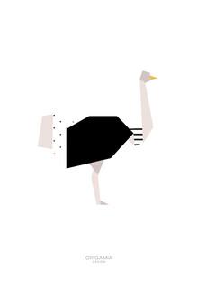 Anna Maria Laddomada, Ostrich | Birds Series | Origamia Design (Somalia, Afrika)