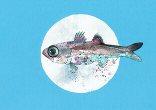 Sabine Israel, Fish (Germany, Europe)