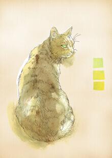 Sabine Israel, cat (Germany, Europe)