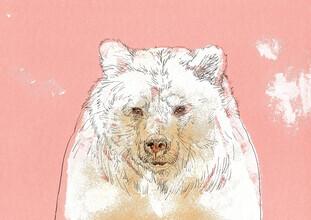 Sabine Israel, Polar bear (Germany, Europe)