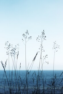 Manuela Deigert, View into the blue (Germany, Europe)