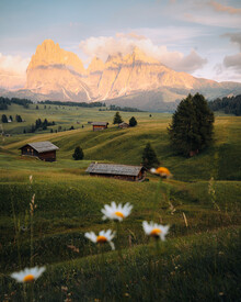 André Alexander, Alpe di siusi (Italy, Europe)