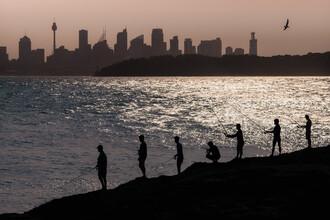 AJ Schokora, Sydney Fishermen (Australien, Australien und Ozeanien)