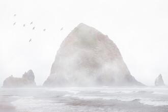 AJ Schokora, Oregon! (United States, North America)