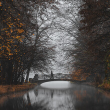 Franz Sussbauer, Brücke im Nymphenburger Park I (Deutschland, Europa)