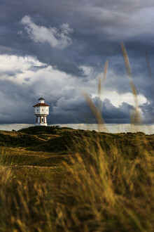 Franzel Drepper, Landschaft mit Wasserturm auf Langeoog B (Deutschland, Europa)